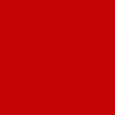 colore 1019